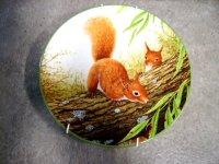 ロイヤルドルトン(Royal Doulton) プレート Red Squirrels on Branch  箱付き シリアルナンバー入り